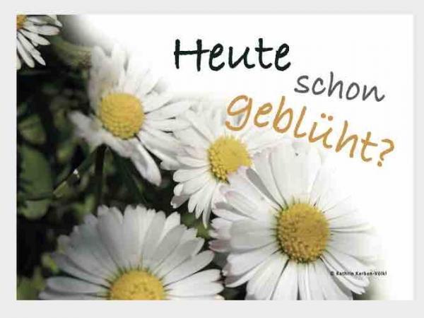 postkarte-heute-schon-geblueht